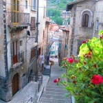 selleri-Scanno