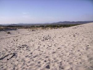 Le dune di Teulada 1
