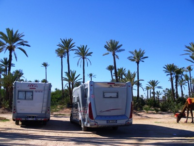 "camper | Marrakech la ""Palmeria"""