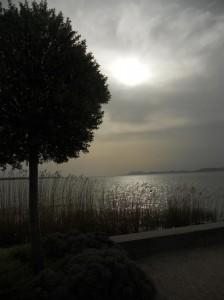 Rive del lago Balaton